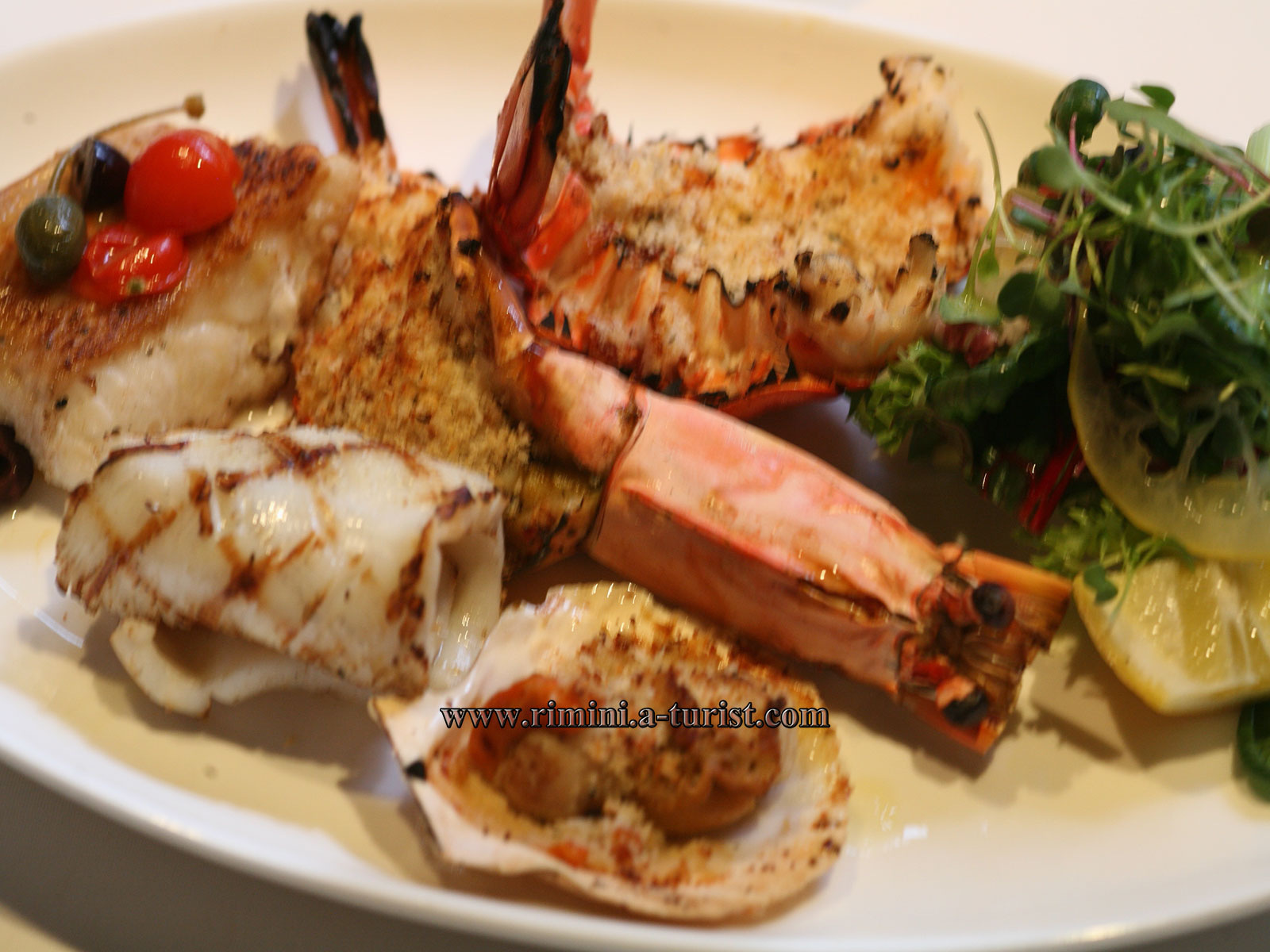 Tutto sulla cucina italiana a rimini for Cucina italiana pesce